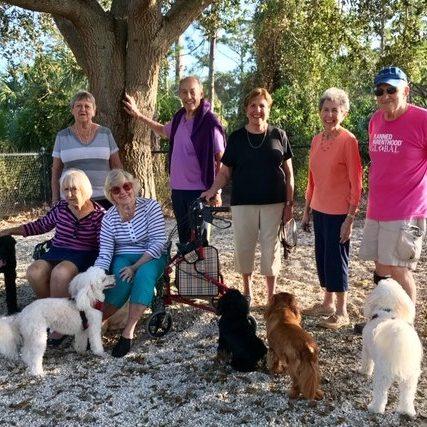 Dog Park at Arbor Trace