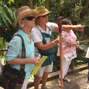 Tour guide shows woman flower