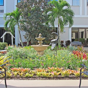 Assisted living facility garden