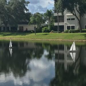 Two sail boats on Arbor Lake
