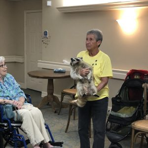 Assisted living residents with blind raccoon