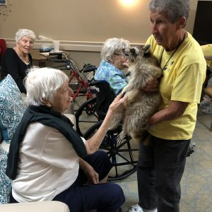 Arbor Glen at Arbor Trace gets a raccoon visit
