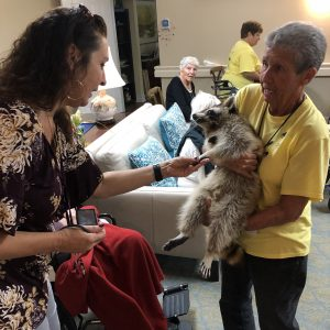 Assisted living facility meet a raccoon