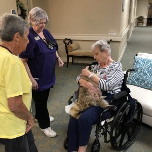 Assisted living resident in wheelchair holding a raccoon