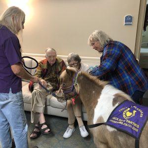 Mini horse visits Arbor Glen