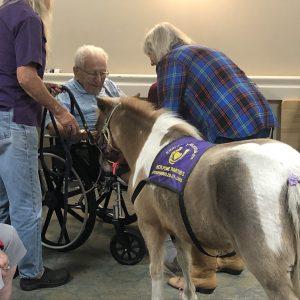 Arbor Trace senior living meets mini horse