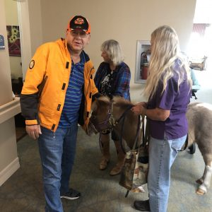 man pets mini horse at arbor trace
