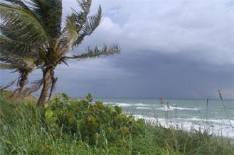 Hurricane Preparation & Planning