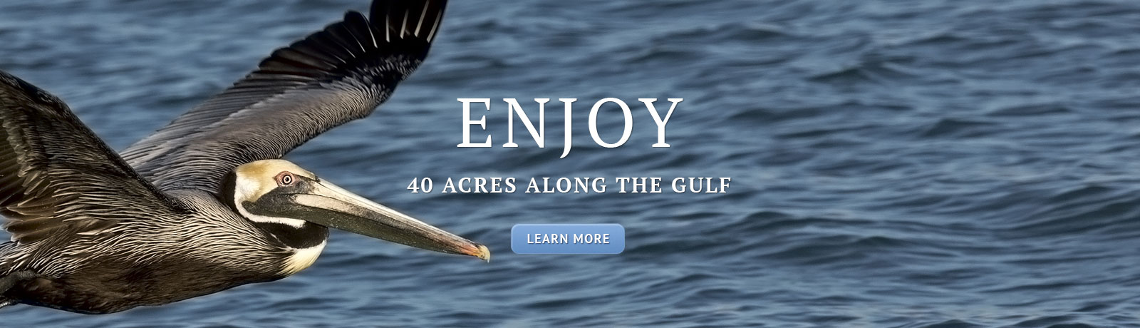 Enjoy 40 acres along the Gulf